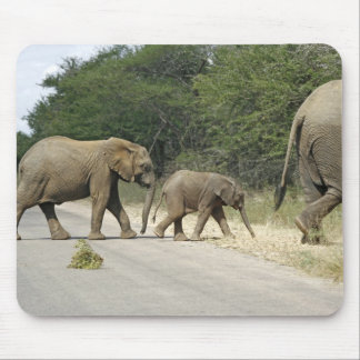 Elephants Mouse Mat
