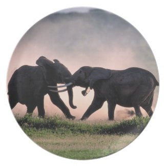 Elephants. Plate