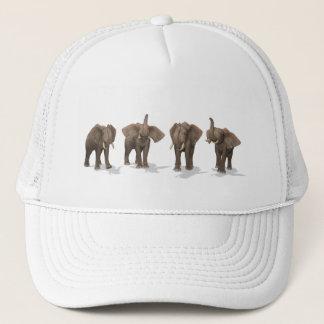Elephants Quartet Cap