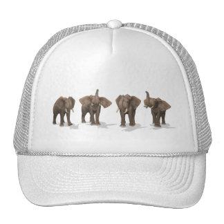 Elephants Quartet Mesh Hats