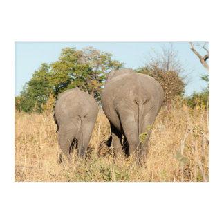 Elephants Walking Away Acrylic Wall Art