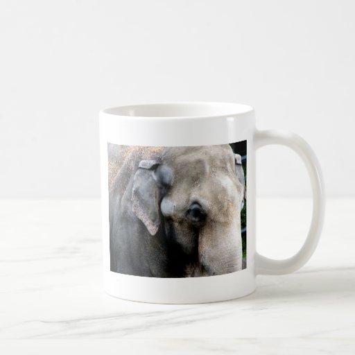 Elephants Wisdom Mug