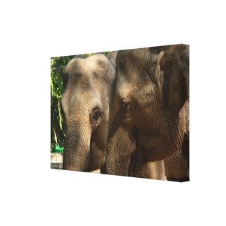 Elephants Wrapped Canvas