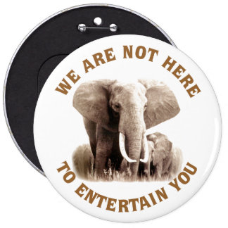 Elephats Deserve Respect 6 Cm Round Badge