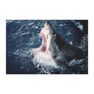 Elevated Shark mouth open Canvas Print