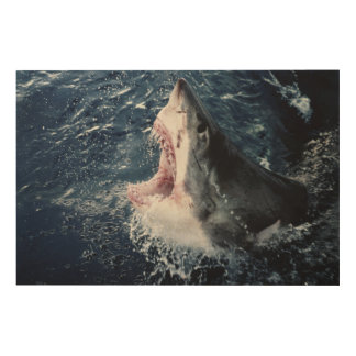 Elevated Shark mouth open Wood Wall Decor