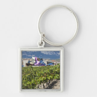 Elevated town view and Hotel Marques de Riscal Key Ring