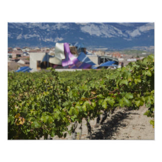 Elevated town view and Hotel Marques de Riscal Poster