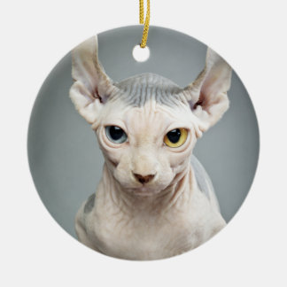 Elf Sphinx Cat Photograph Christmas Ornament