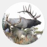 Elk and mule deer round sticker