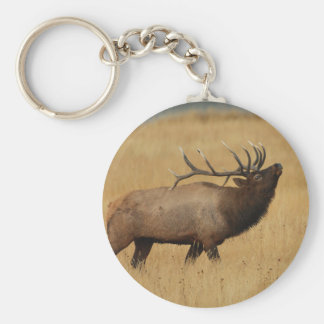 elk basic round button key ring