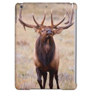 Elk (Cervus Elephus) Bull Herding Harem