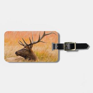 Elk (Cervus Elephus) Resting In Meadow Grass Bag Tag