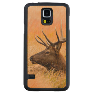 Elk (Cervus Elephus) Resting In Meadow Grass Carved Maple Galaxy S5 Case
