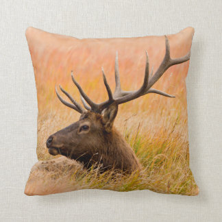 Elk (Cervus Elephus) Resting In Meadow Grass Cushion
