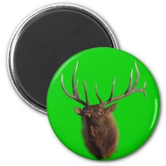 Elk Charging Magnets