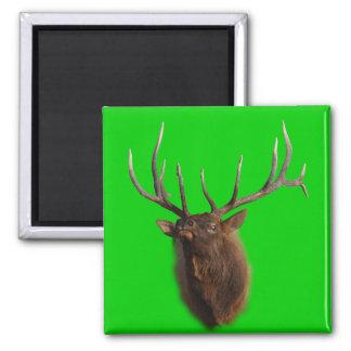 Elk Charging Square Magnet