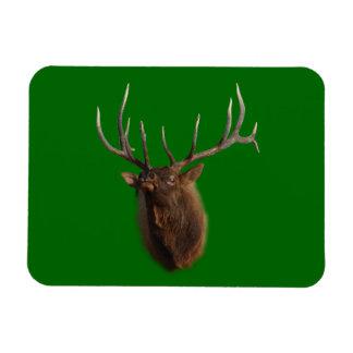 Elk Charging Rectangular Photo Magnet
