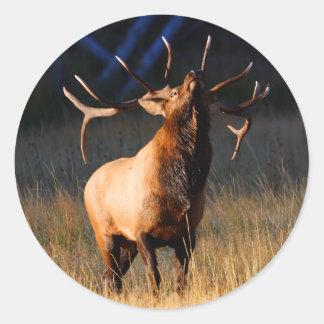 elk classic round sticker