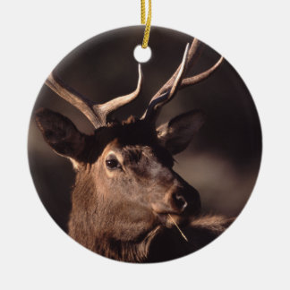 elk face and grass round ceramic decoration