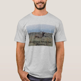 Elk in Grand Teton National Park T-Shirt