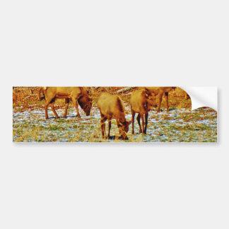 Elk in the snow bumper stickers