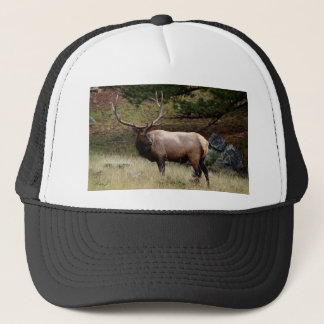 Elk in the Wild Trucker Hat