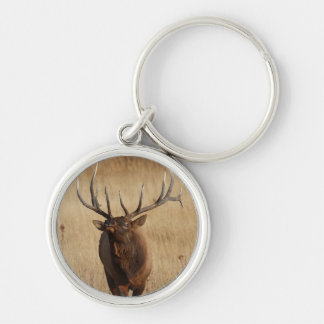 elk Silver-Colored round key ring