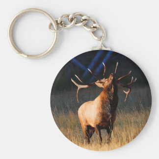 elk key chains