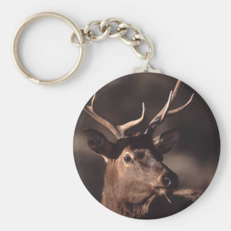 elk basic round button key ring