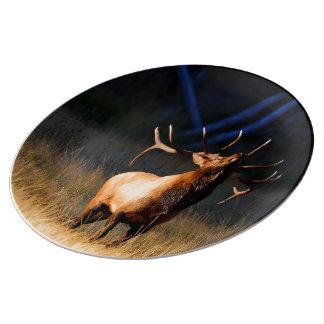Elk Porcelain Plate