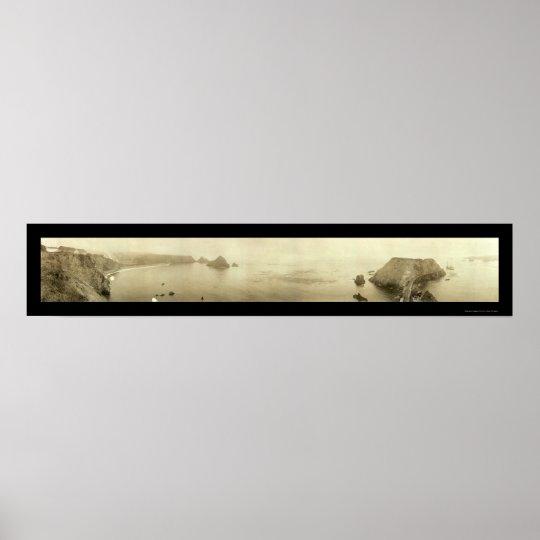 Elk Mendocino CA Photo 1911 Poster