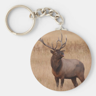 elk raspberry basic round button key ring