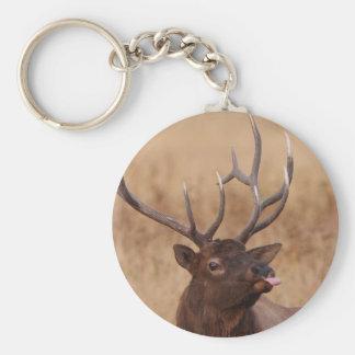 elk raspberry basic round button key ring