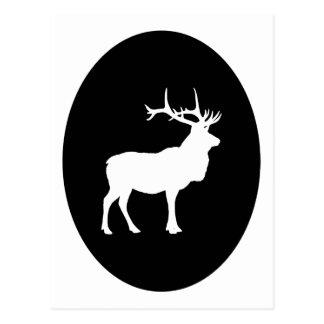 Elk Silhouette Postcard