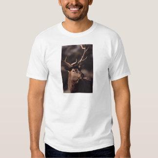 elk t shirts