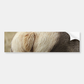 Elk Tail and fur Bumper Sticker