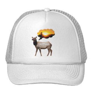 Elk thinking of sunset cap