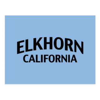 Elkhorn California Postcards