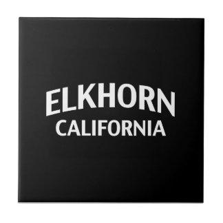 Elkhorn California Ceramic Tile