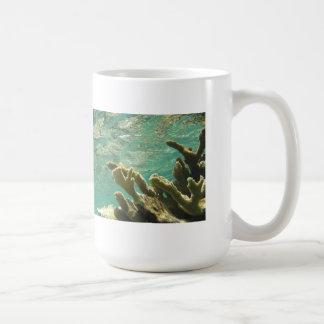 Elkhorn coral in Florida Keys Basic White Mug