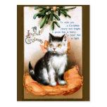 Ellen H. Clapsaddle: Cat under Mistletoe Post Cards