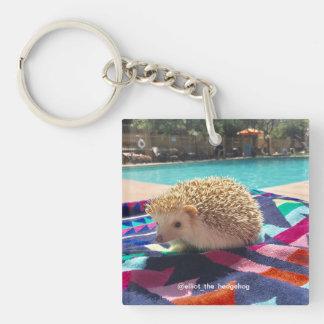 elliot the hedgehog keychain