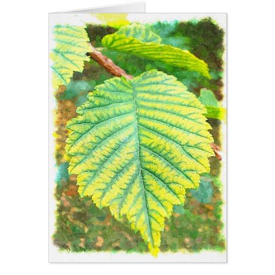 Elm Leaf in Autumn Card