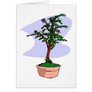 Elm Like Bonsai Tree Pink Pot Card