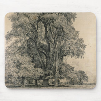 Elm trees in Old Hall Park, East Bergholt, 1817 (p Mouse Pad