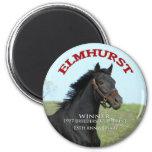 Elmhurst - '97 Breeders' Cup Sprint Winner Magnet
