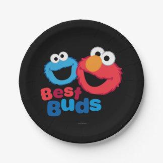 Elmo and Cookie Besties Paper Plate