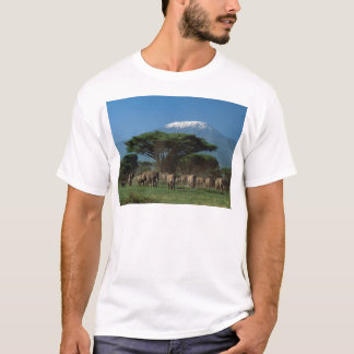 Elphants of Mt.Kilimanjaro T-Shirt