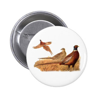 Elusive Pheasant Bird Hunting Pinback Buttons